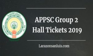 APPSC Group 2 Hall Tickets 2019