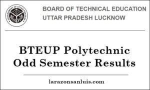 BTEUP Polytechnic Results 2019